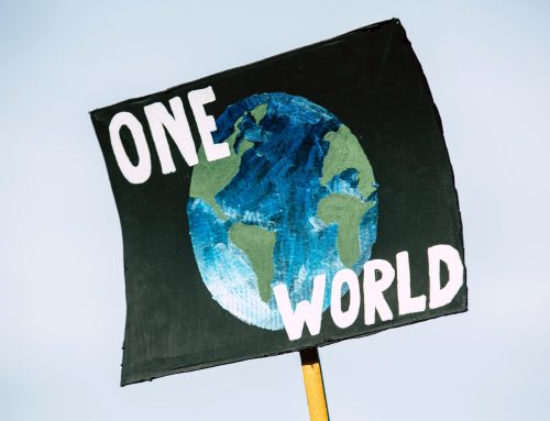 How can your (non-environmental) NGO help in the fight against climate change? – Part 1