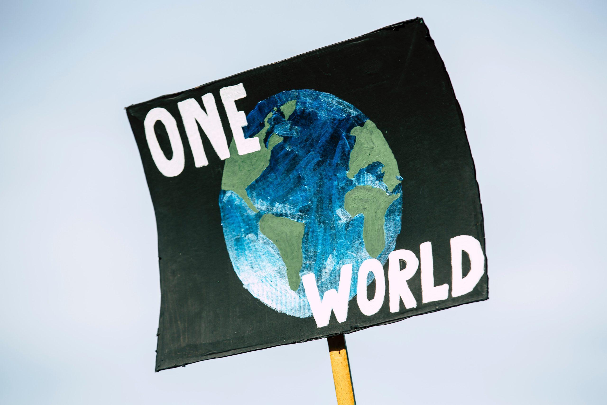 sustainable NGO